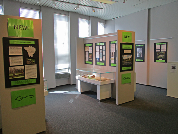 Exhibition Bromley Library